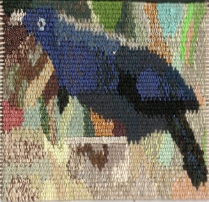 new satin bower bird